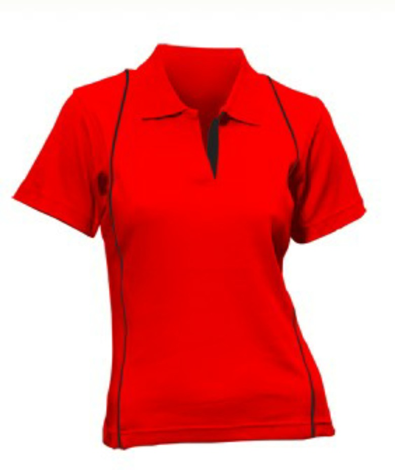 Ladies 100% Cotton T-Shirt (Polo)