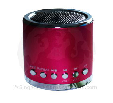 Cylindrical MP3 Speaker with Radio and TF Card amd USB Input