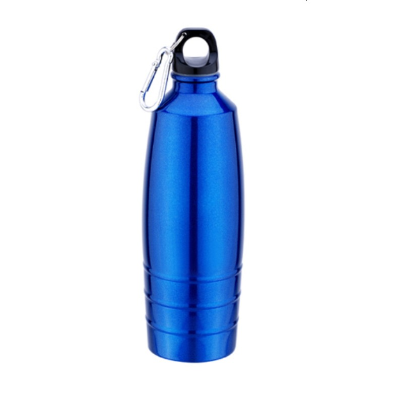 Stainless Steel Sports Bottle with carabiner (700ml)
