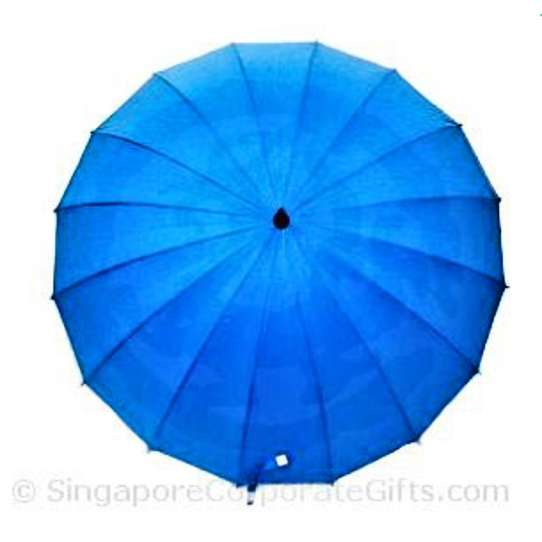 "Umbrella with 16 Panels (24"")"